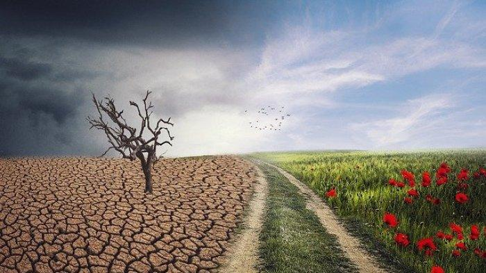 Perubahan: Pilih Cara Radikal Atau Incremental?