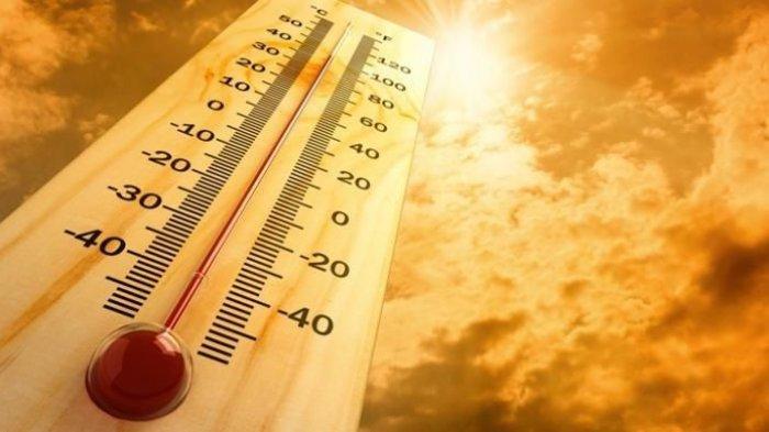 Suhu Panas Luar Biasa Landa Negara-negara Eropa, Tertinggi Capai 41,5 Celcius