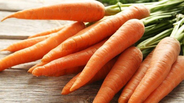 Ilustrasi wortel. Bagaimana cara wortel tersebut berkembang biak?