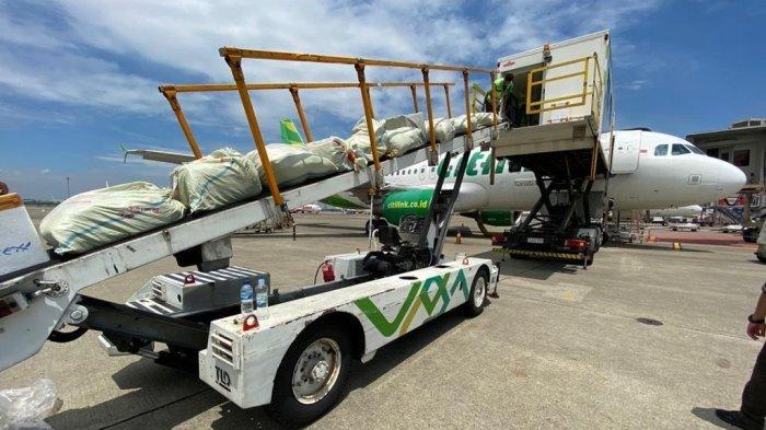 Inovasi Baru Citilink, Luncurkan Aplikasi Digital Betterfly Cargo