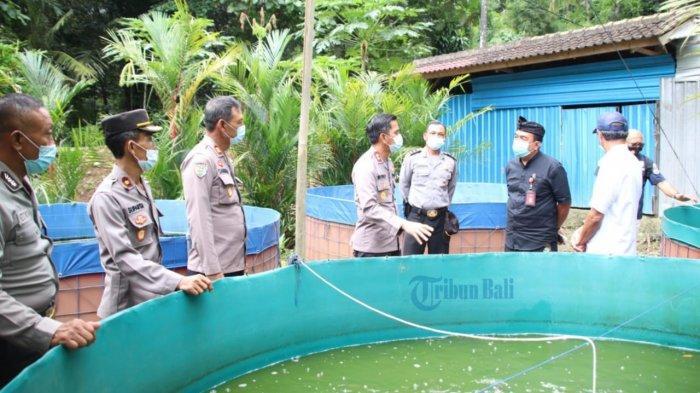 Desa Sangeh Dipastikan Bisa Menjaga Ketahanan Pangan di Tengah Pandemi Covid-19