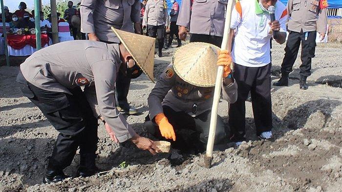 Program Ketahanan Pangan di Badung, Polsek Abiansemal Kelola 26 Are Lahan Tidur