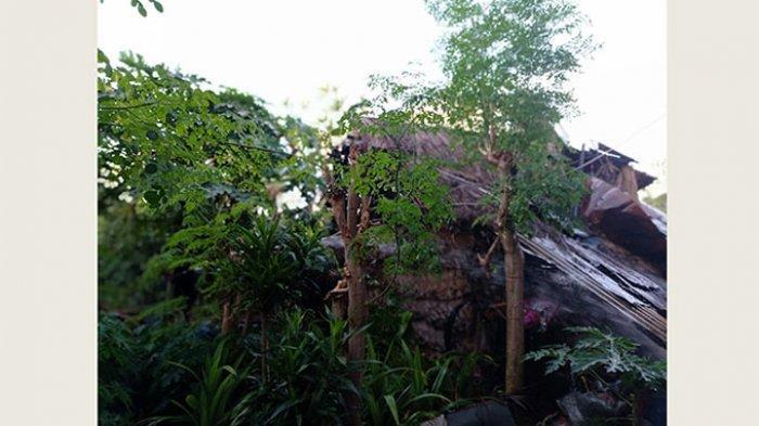 Lupa Matikan Bara Api, Dapur Tradisional di Denpasar Ludes Terbakar