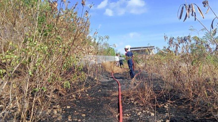 Memasuki Musim Kemarau, Kasatpol PP Klungkung Minta Masyarakat Waspadai Potensi Kebakaran Lahan