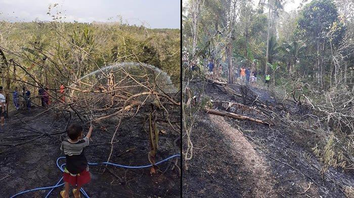 Hutan Jati 10 Are di Jembrana Terbakar, Sudah Tujuh Kebakaran Terjadi di Bulan September