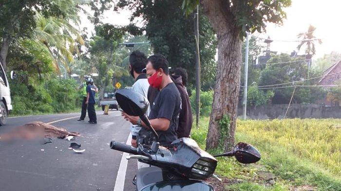 Pria Banyuwangi Tewas Terlindas Mobil di Jalan Denpasar-Gilimanuk Jembrana