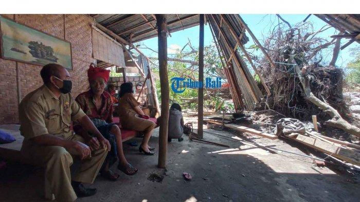 Kediaman Lansia Rusak Ditimpa Pohon Beringin di Klungkung, Kesul: Untung Tak Menimpa Kamar Tidur