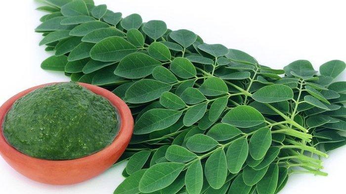 Termasuk Daun Kelor, Ini 5 Tanaman Herbal yang Bisa Membantu Menjaga Kesehatan Jantung