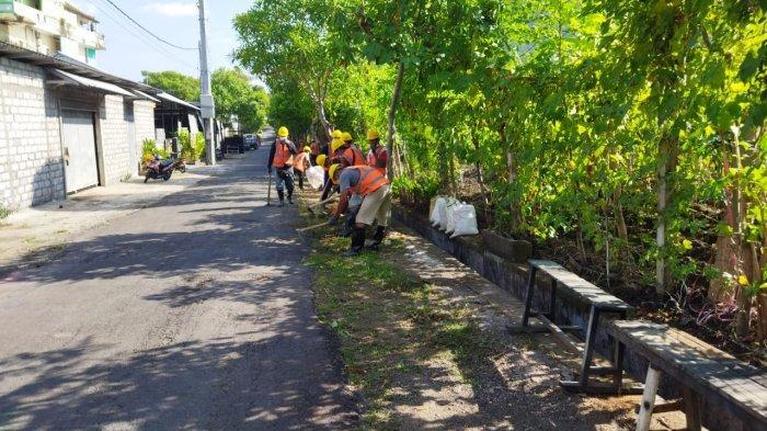 Dukung KOTAKU, Kelurahan Ubung Gelar Kegiatan Padat Karya Tunai