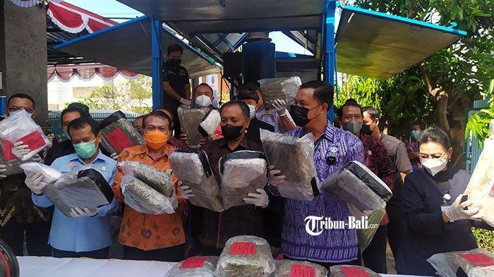 Peringati HANI 2021, BNNP Bali Musnahkan Barang Bukti 48 Kg Ganja dan 984 Gram Sabu
