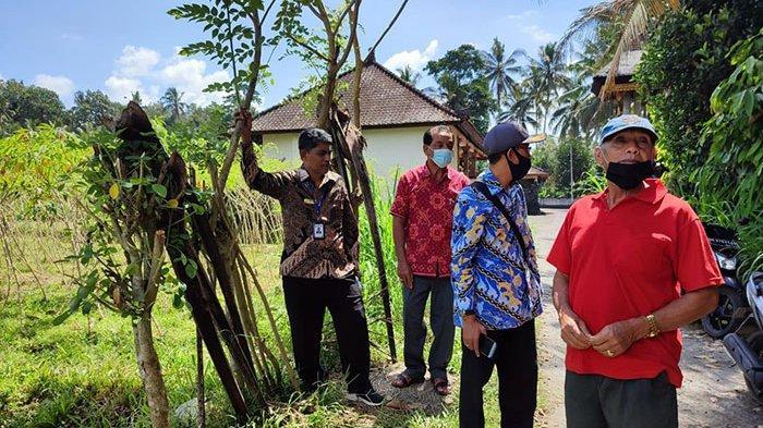 Ombudsman Perwakilan Bali Turun ke Lokasi Gali Persoalan Kekeringan di Subak Balangan Mengwi Badung