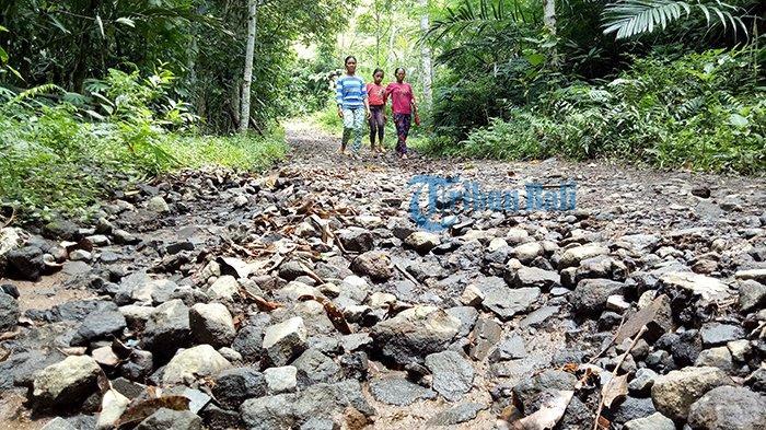 Jalan Utama Penghubung Tiga Banjar Benyah Latig