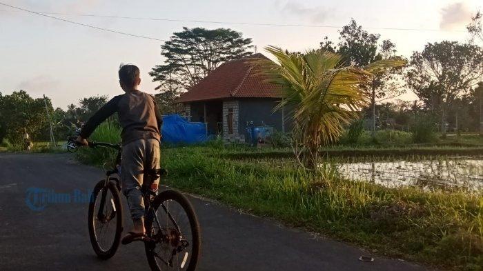 Sektor Pertanian di Bangli Bali Terancam Kehilangan Anggaran Miliaran