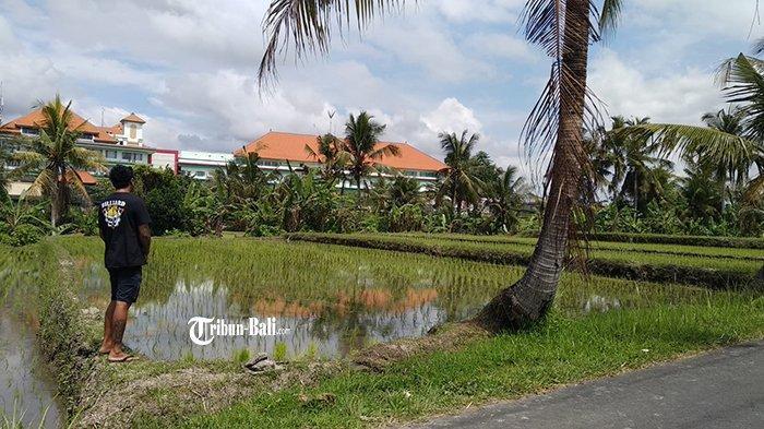 Warga Tarukan Ubud Tolak Pembangunan TPS3R, Subagia: Tempatnya Jangan di Situ