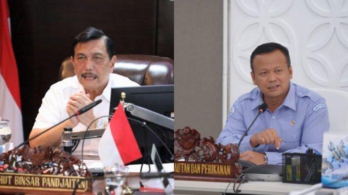 Luhut Binsar Pandjaitan dan Edhy Prabowo - Luhut Binsar Pandjaitan menilai sikap Edhy Prabowo seperti kesatria. Ia meminta agar KPK tak memeriksa secara berlebihan.