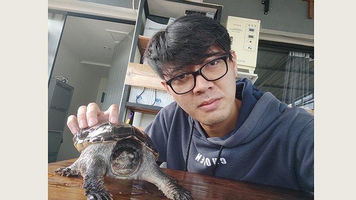 Harganya Mencapai Puluhan Juta Rupiah, Made Febby Pilih Investasi Kura-kura