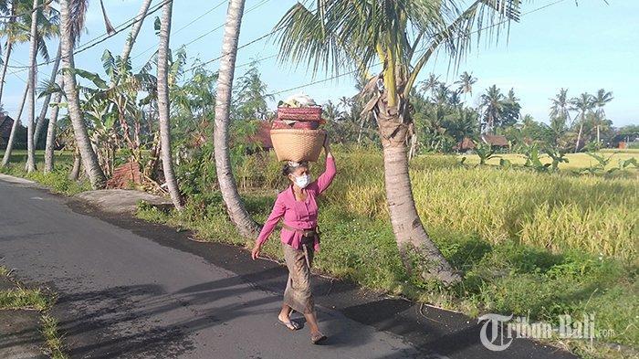 Ilustrasi - Mensyukuri Anugerah Purnama Kadasa, Momen Peralihan Musim Penghujan ke Musim Kemarau