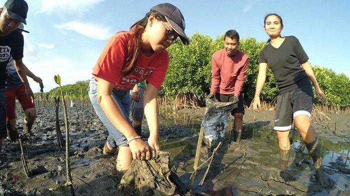Terapkan Konsep Wana Kertih di Hutan Mangrove untuk Perubahan Iklim