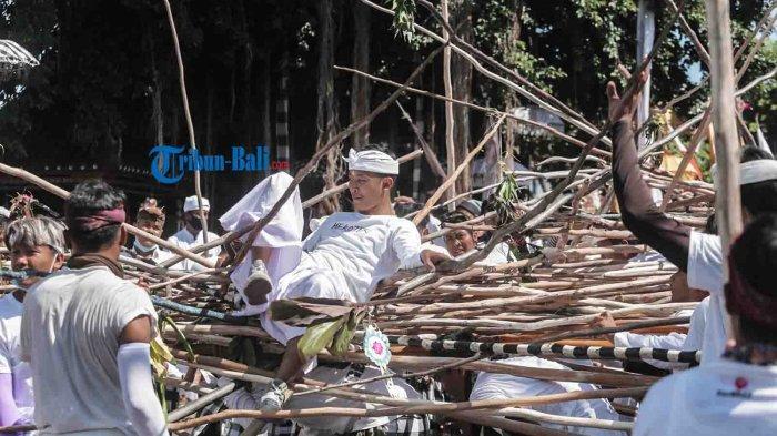 Sejumlah warga memanjat tumpukkan kayu yang membentuk formasi menyerupai gunung dalam tradisi mekotek yang digelar saat merayakan Hari raya Kuningan di desa Munggu, Kecamatan Mengwi, Badung. Sabtu 24 April 2021.