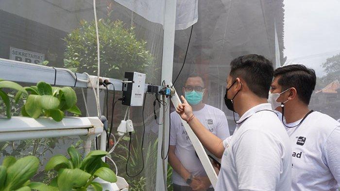 Mudahkan Pelaku Usaha Sektor Pertanian, PLN Punya Program Electrifying Agriculture