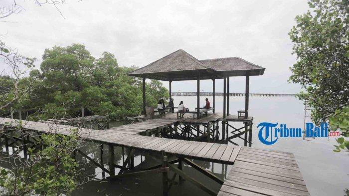 Menelusuri Objek Wisata Mangrove Denpasar Bali, Ikon Kota Denpasar Yang Tutup Selama Pandemi