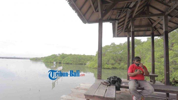 Suasana  Objek Wisata Mangrove Denpasar Bali