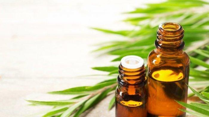 Essential Oil Bisa Bantu Tubuh Lebih Rileks
