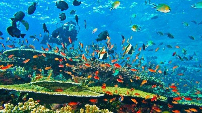 Meski Sangat Indah, 8 Tempat Indah di Bumi Ini Tak Sembarang Orang Berani Mengunjungi