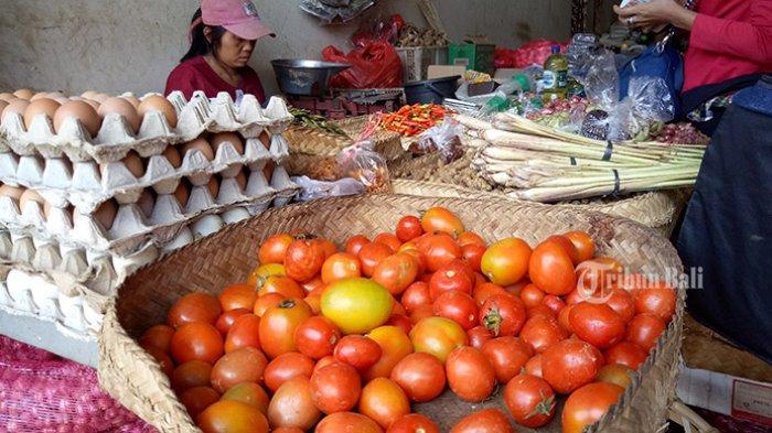 Musim Panen, Petani di Karangasem Merugi Lantaran Harga Tomat Anjlok