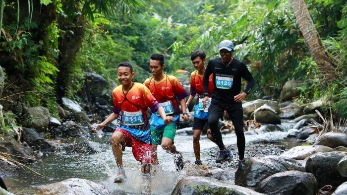 Diikuti 560 Pelari, Banyuwangi Ijen Green Run Sajikan Rute Penuh Tantangan
