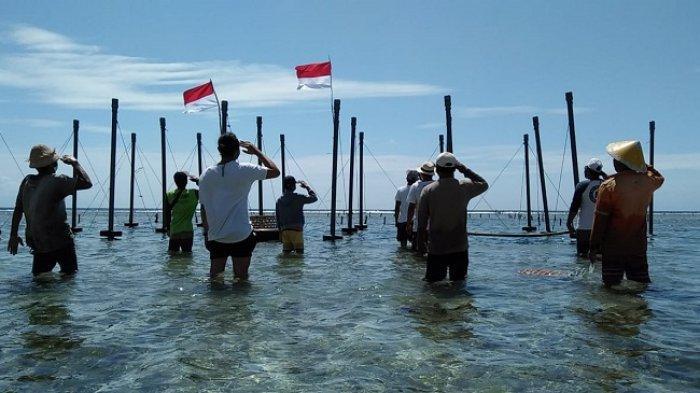 Sambil Panen, Petani Rumput Laut Nusa Penida Gelar Upacara Bendera di Pesisir Pantai
