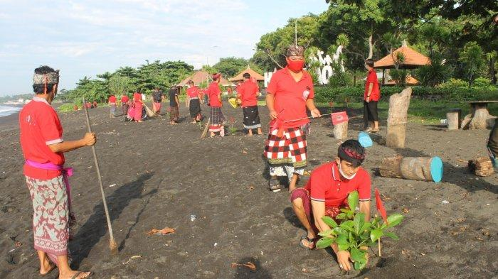 DPC PDIP Klungkung Bali Tanam Pohon Perindang Sepanjang Pesisir Goa Lawah