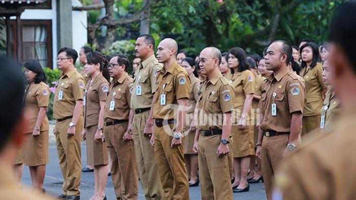 Progres Verifikasi Seleksi Administrasi CPNS 2019 di Bali, 3 Pemda Ini Sudah 100 Persen