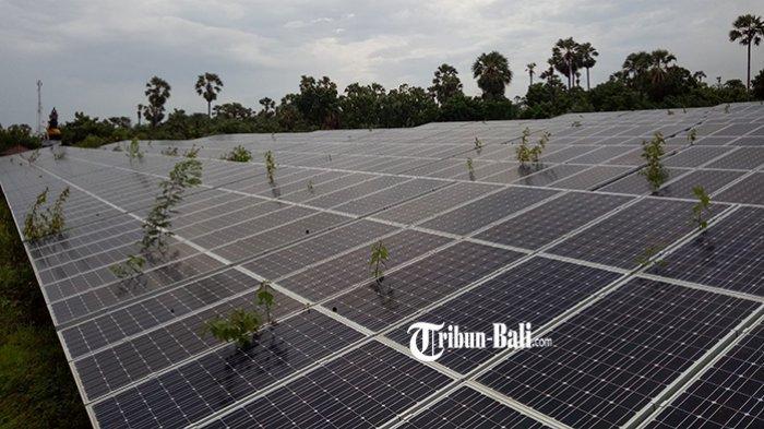 Capai 1 Megawat, Energi PLTS di Kecamatan Kubu Karangasem Akan Dikerjasamakan dengan PLN