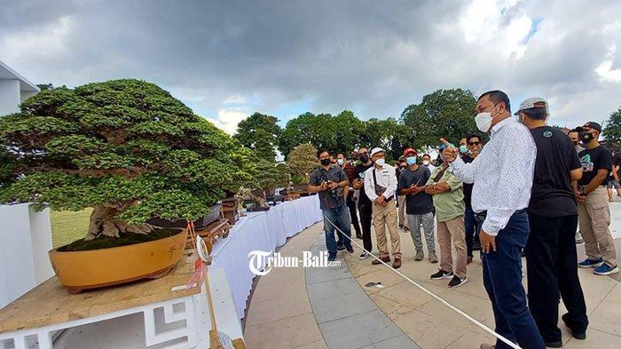Sering Dipadati Masyarakat, Pameran Bonsai Gianyar Akhirnya Dibuka Secara Resmi