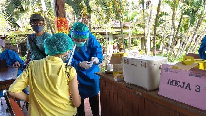 UPDATE Pengiriman Vaksin Covid-19 ke Bali Terlambat, Kadiskes: Mohon Bersabar Dulu