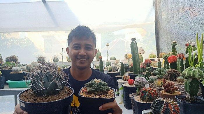 Berawal Hobi Baru di Masa Pandemi, Frisky Febiant Raup Keuntungan Setiap Bulan dari Penjualan Kaktus