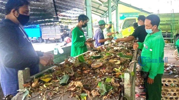 DLHK Denpasar Olah Sampah Organik Hasil Pemilahan Jadi Pupuk Kompos