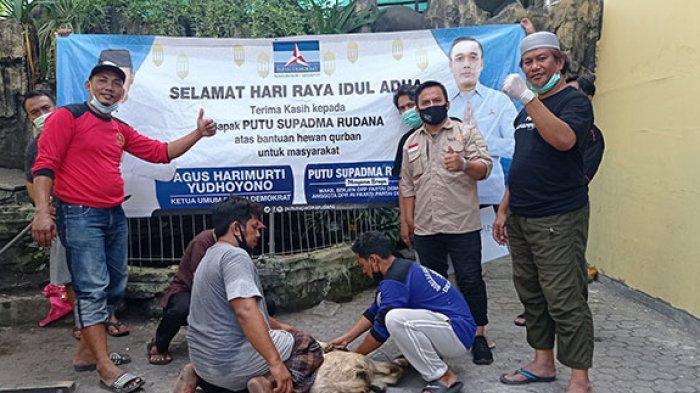 Ringankan Beban Warga Terdampak Pandemi, Anggota Komisi VI DPR PSR Beri Bantuan Hewan Kurban di Bali