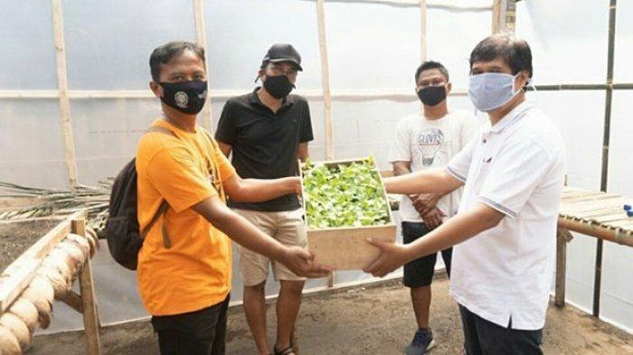 Kelompok Mina Tani Sari Dewi Terima 2.000 Bibit Lele Untuk Urban Farming di Tengah Pandemi Covid-19