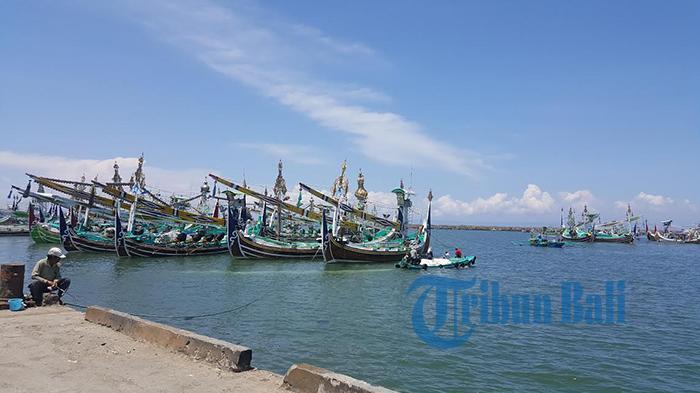 Diterpa La Nina, Nelayan Jembrana Dipastikan Paceklik Lemuru Hingga Maret 2017
