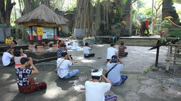 Di Tengah Pandemi, Bali Safari Gelar Tumpek Kandang secara Sederhana