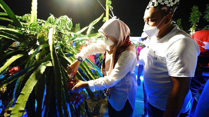 Resmikan Kampung Naga, Bupati Banyuwangi Dorong Petani Lakukan Hilirisasi Pertanian