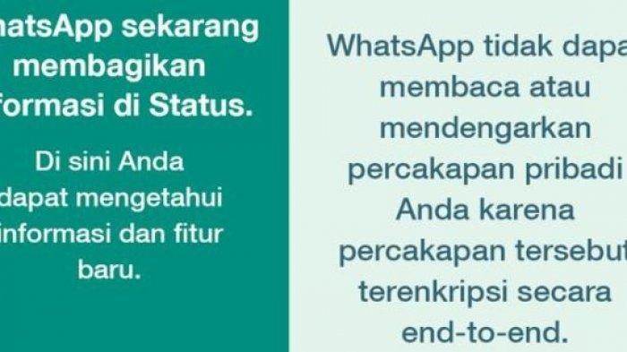 Muncul Pesan WhatsApp di Status Pengguna Soal Komitmen Menjaga Privasi, Betulkah WhatsApp Tertekan?