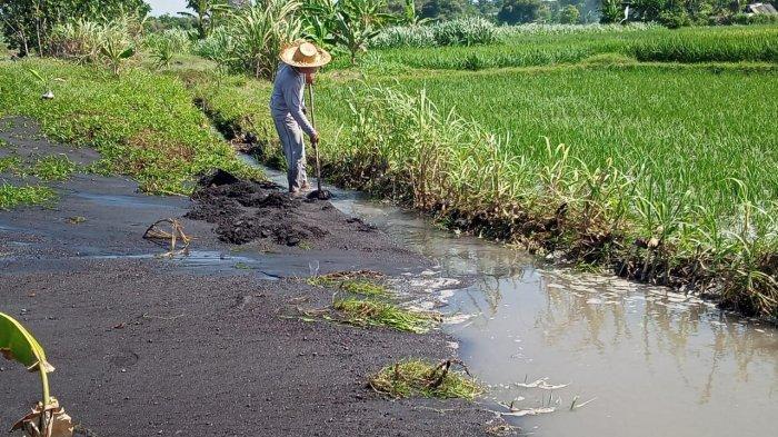 Ombak Tinggi Di Pesisir Pantai Sidayu, Warga Setempat Khawatir Air Laut Sampai Ke Lahan Pertanian