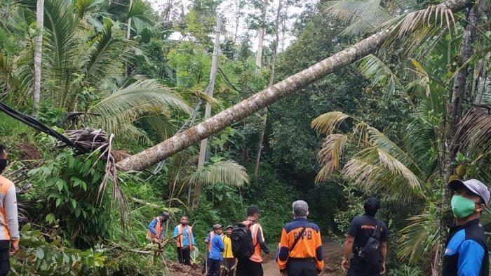 Longsor dan Pohon Tumbang Terjadi di Beberapa Titik di Karangasem