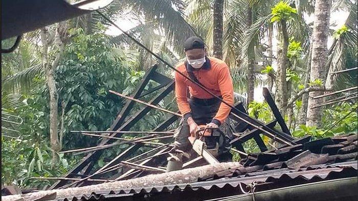 Pohon Kelapa Setinggi 12 Meter Tumbang Timpa Rumah Warga di Desa Tenganan Karangasem