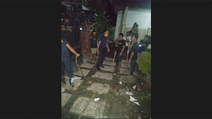 Ular King Cobra Sepanjang 2,5 Meter Masuk Rumah Warga di Kelurahan Padang Kerta Karangasem