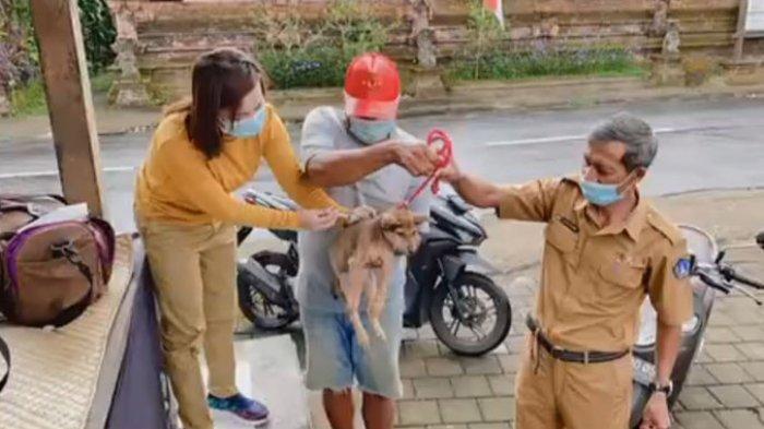 Wilayah Badung Selatan Jadi Atensi Khusus Vaksinasi Rabies