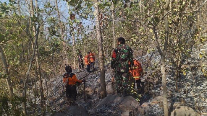 Karhutla Meningkat 12 Kasus, 113 Hektare Lahan di Karangasem Terbakar